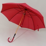 parapluierougenacarat1