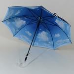 parapluienuage1