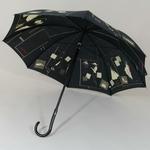 parapluienouvellevague2