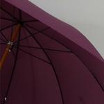 parapluieprune5