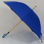 parapluiebleuelectrique2