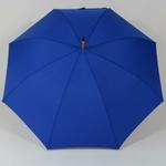 parapluiebleuelectrique3