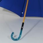parapluiebleuelectrique5