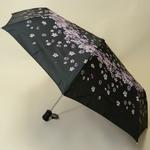 parapluierainingbloom1