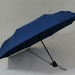 parapluieturismoflatnavy1