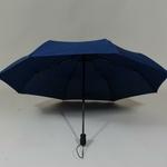 parapluieturismoflatnavy5
