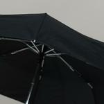 parapluievogalu5