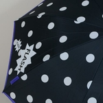 parapluiesnowflake1