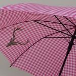 parapluieheidirose5