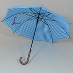 parapluieheidibleu1
