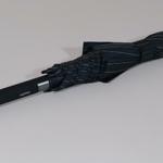 parapluieoxfordstrip1