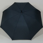 parapluieoxfordsmallspot1