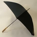 parapluiecomissioner1