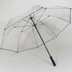 parapluieclearview
