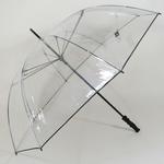 parapluieclearview1