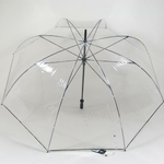 parapluieclearview2