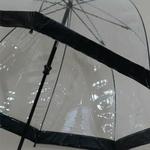 parapluiebirdcageblack5