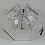 parapluiebirdcagebw3