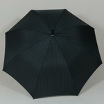 parapluiecambridgestrips3