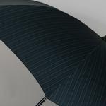 parapluiecambridgestrips5