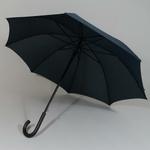 parapluiecambridgegreyline3
