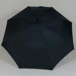 parapluiecambridgesmallspo3
