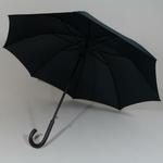 parapluiecambridgesmallspot