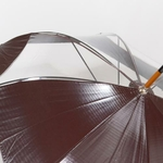 parapluielunatiquebor5