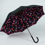 parapluiepetale1