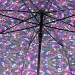 parapluiecamoufrose3