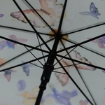 parapluiebutterfly4