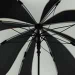 parapluiesunflowernb4