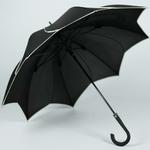 parapluiesunflowern3