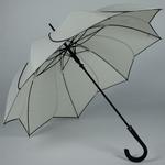 parapluiesunflowerb4