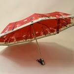 parapluieminitempeterouge3