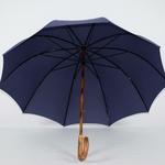 parapluie de berger bleu 4