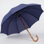 parapluie de berger bleu2