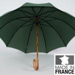 parapluie de berger vert 1