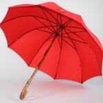parapluie de berger rouge 4