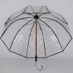 parapluie transparent francais 3