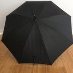Parapluie Voltaire 1 vue large