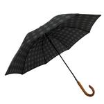 parapluie style voltaire de profil