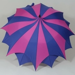 parapluieamazonibleu