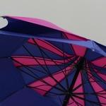 parapluieamazonibleu3