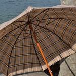 parapluieceltique4