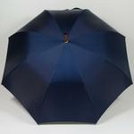parapluiebulldog5