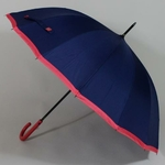parapluieholibleu