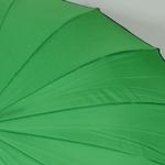 parapluieholivert4
