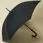 parapluiehuntsman1