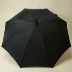 parapluiehuntsman3